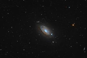 M63 Napraforgó-galaxis