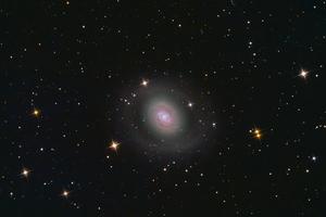 M94 macskaszem-glaxis