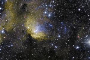 Tulipán-köd és Cygnus X-1 fekete lyuk