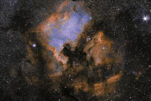NGC 7000 Észak-Amerika köd, szintetikus HOO