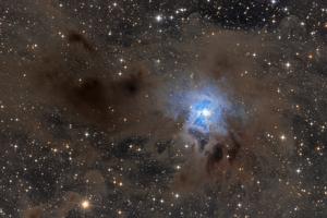 NGC7023 - Írisz-köd