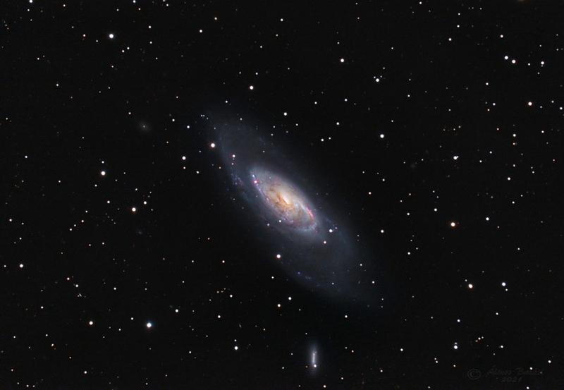 M106 ( NGC 4258)
