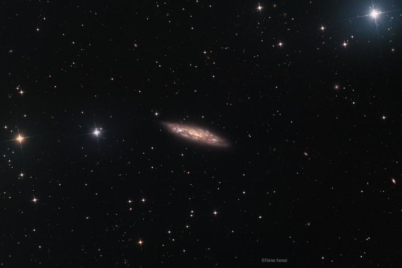 M108 - Csillagda Firstlight