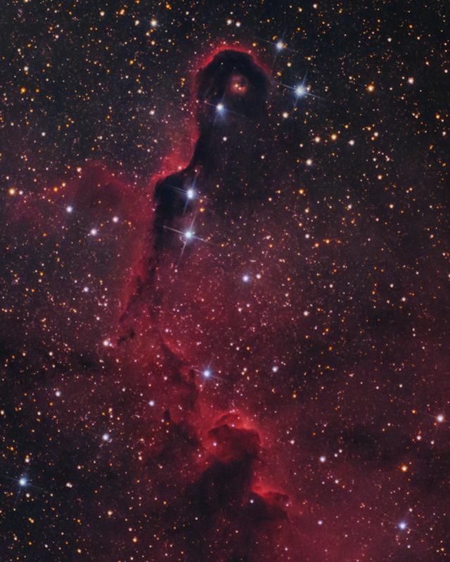 Elefántormány-köd - IC1396