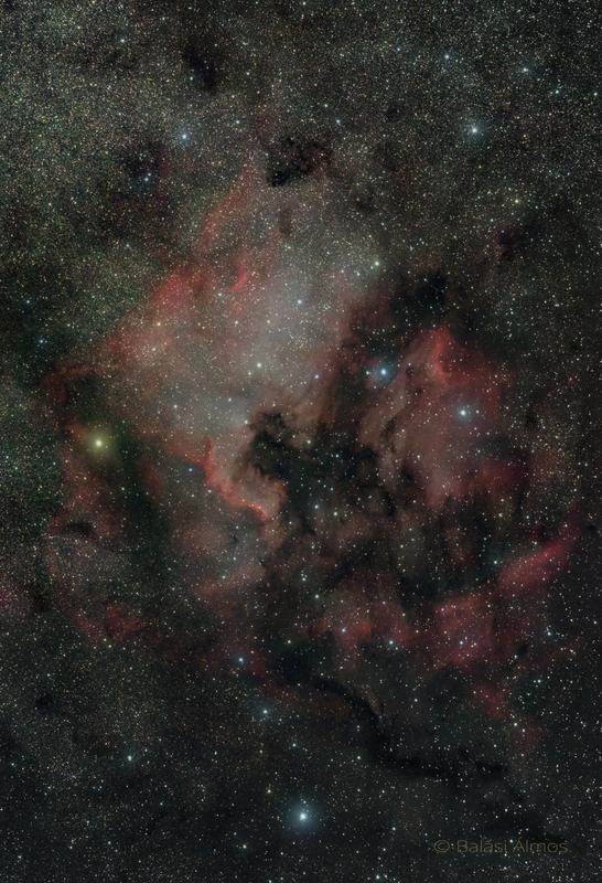 Észak-Amerika-köd és a Pelikán-köd ( NGC7000 & IC5070´) - vezetett