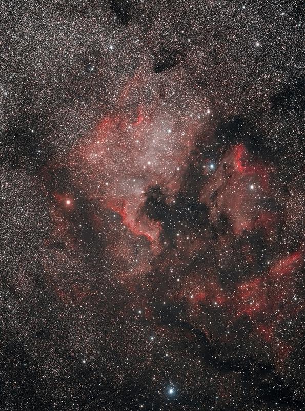 Cygnus részlet -NGC7000 - IC5067 - IC5070 - csillagkicsinyítéssel