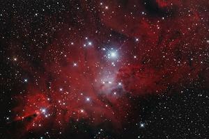 NGC 2264 - Kúp-köd és Karácsonyfa-halmaz